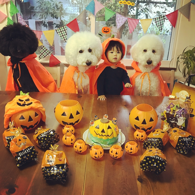 Loạt ảnh hóa trang Halloween hoành tráng nhất mạng xã hội của bé gái Nhật và những người bạn thú cưng - Ảnh 3.