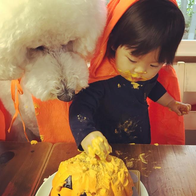 Loạt ảnh hóa trang Halloween hoành tráng nhất mạng xã hội của bé gái Nhật và những người bạn thú cưng - Ảnh 17.