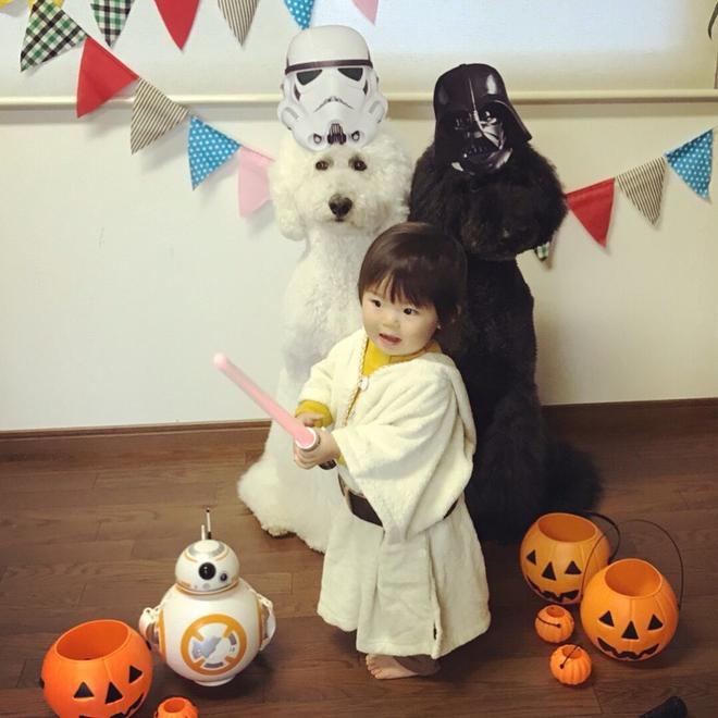 Loạt ảnh hóa trang Halloween hoành tráng nhất mạng xã hội của bé gái Nhật và những người bạn thú cưng - Ảnh 20.