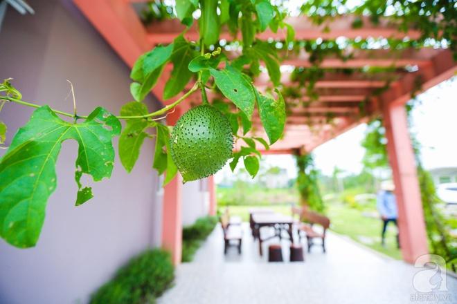 Ngôi nhà vườn xanh mát bóng cây của nữ giảng viên đại học chỉ cách Hà Nội 30 phút chạy xe - Ảnh 22.