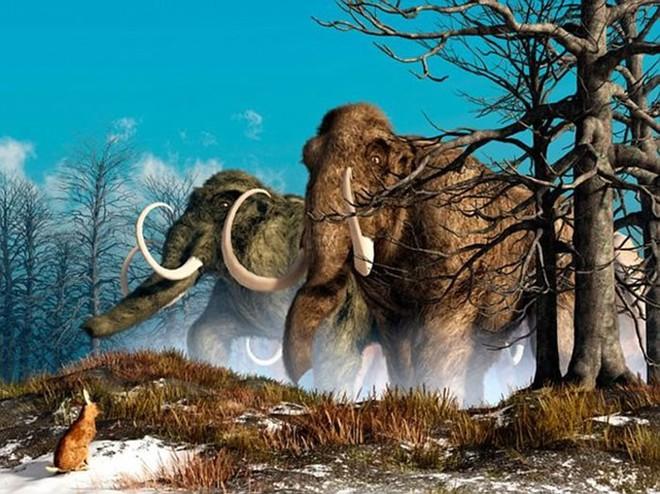 Những loài động vật tưởng tầm thường nhưng có sức mạnh thay đổi cả thế giới - Ảnh 5.