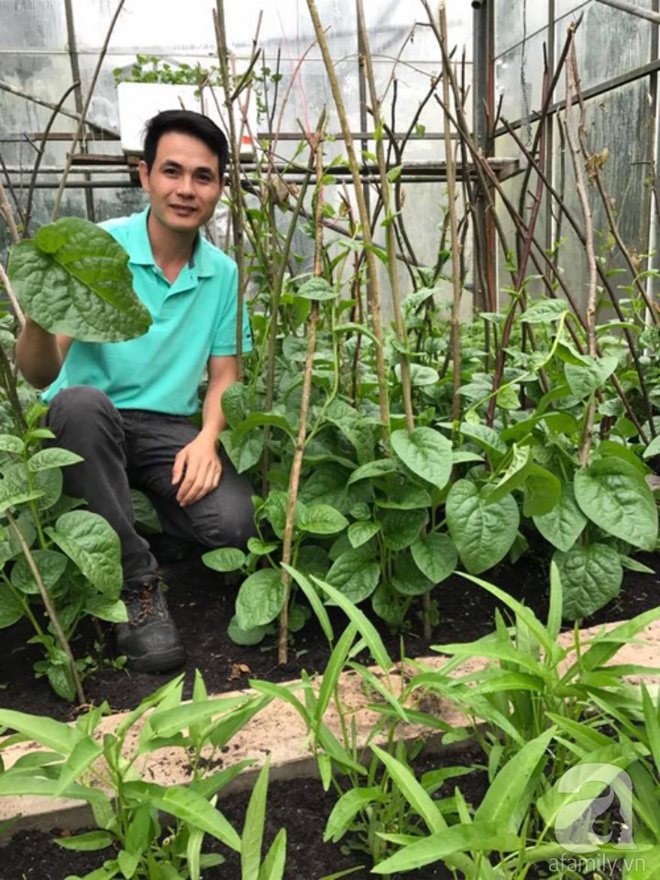 Ông bố quê xứ Thanh trồng cả vườn rau rộng thênh thang lên đến 3500m² với đủ mọi loại cây trái - Ảnh 2.