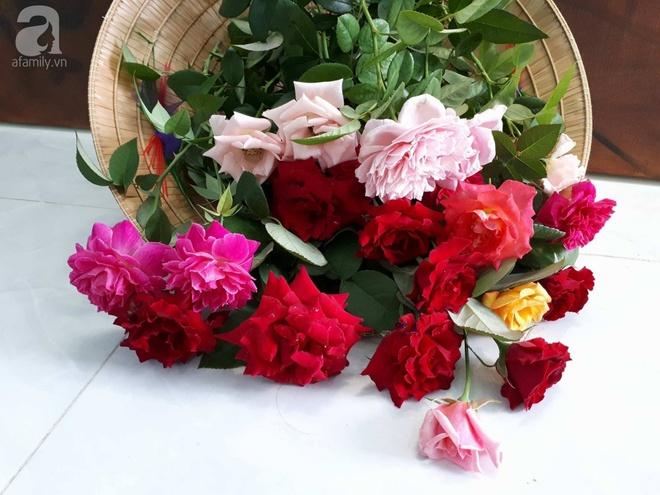 Khu vườn hoa hồng trên mây dịu dàng như một bài thơ của chàng họa sĩ trẻ ở TP. HCM - Ảnh 9.