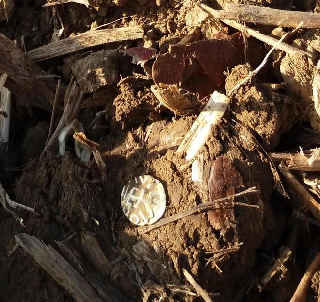 Cầm máy dò kim loại đi khắp cánh đồng, người đàn ông gặt hái được thành quả không tin nổi - Ảnh 2.