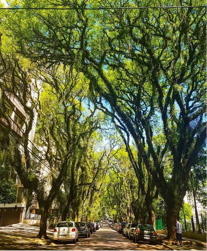 Nín thở ngắm nhìn những con phố đẹp nhất trên thế giới - Ảnh 20.