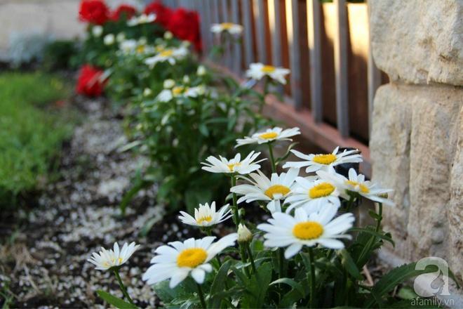 Nữ du học sinh Việt tại Mỹ tiết lộ bí quyết tạo khu vườn mini 6m² nhưng đủ rau và hoa đẹp hút hồn - Ảnh 20.