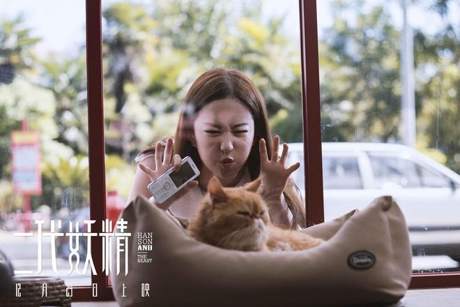 Lưu Diệc Phi gây thích thú khi làm vẻ mặt đáng yêu bên chú mèo đỏng đảnh - Ảnh 2.