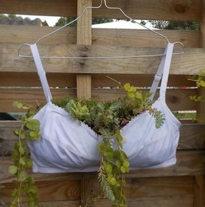 Những ý tưởng làm vườn có 1-0-2 đến các bác nông dân cũng phải ngả mũ bái phục - Ảnh 1.