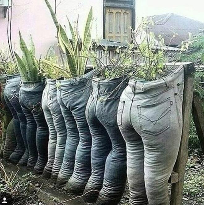 Những ý tưởng làm vườn có 1-0-2 đến các bác nông dân cũng phải ngả mũ bái phục - Ảnh 5.