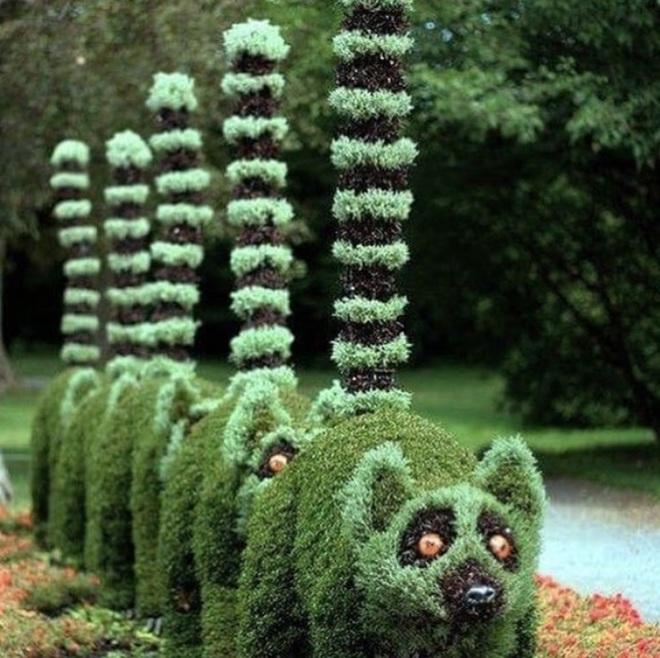 Những ý tưởng làm vườn có 1-0-2 đến các bác nông dân cũng phải ngả mũ bái phục - Ảnh 9.