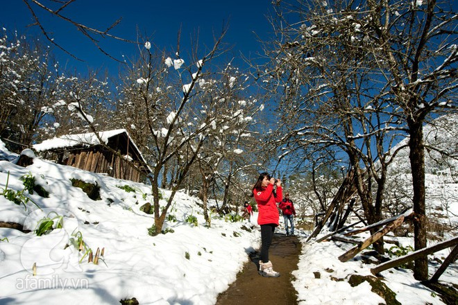 Nếu định lên Sa Pa săn tuyết dịp siêu lạnh, hãy nhớ làm đủ 5 trải nghiệm cực đáng giá này - Ảnh 1.