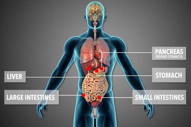 Bệnh lạ khiến hỏng cả 5 cơ quan nội tạng, người phụ nữ vẫn sống kỳ diệu nhờ phép màu đến vào phút chót - Ảnh 2.