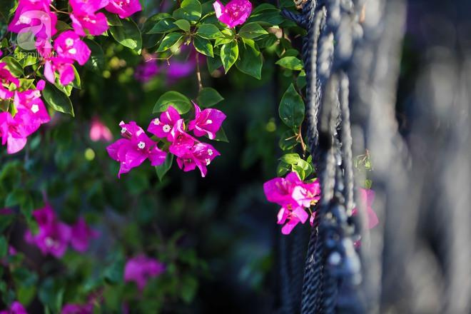 Hội An - cổ thị nên thơ và xinh đẹp ai cũng nên đến ít nhất một lần trong đời - Ảnh 11.