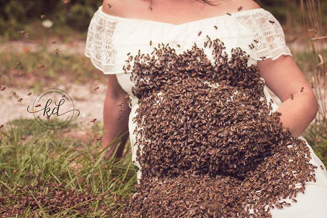 Bí mật bất ngờ phía sau bức hình mẹ bầu chụp hình cùng hàng ngàn con ong - ảnh 6