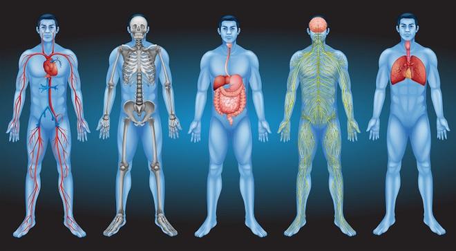 13 cách cân bằng lượng pH trong cơ thể bất cứ ai cũng nên làm để tránh bệnh tật - Ảnh 1.