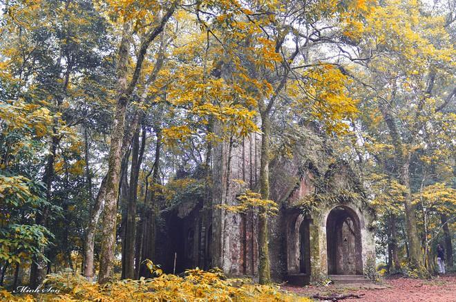Mùa cưới đến rồi, bỏ túi ngay những địa chỉ chụp ảnh đẹp mê ly với lá vàng, lá đỏ này thôi - Ảnh 21.