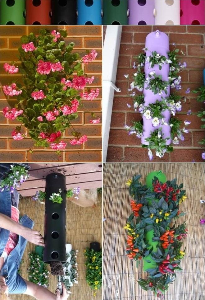 10 ý tưởng trồng cây thẳng đứng tiết kiệm không gian cho nhà chật - Ảnh 1.
