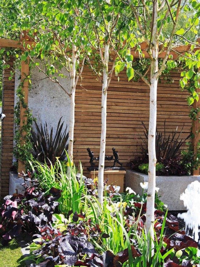 10 mẫu hàng rào vừa đẹp vừa tiết kiệm chi phí cho khu vườn nhà bạn thêm xinh - Ảnh 1.