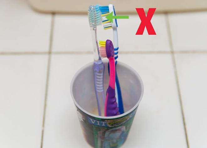 Đánh tan nỗi lo ngại bàn chải đánh răng bẩn bằng cách cực hay và vô cùng đơn giản sau - Ảnh 2.