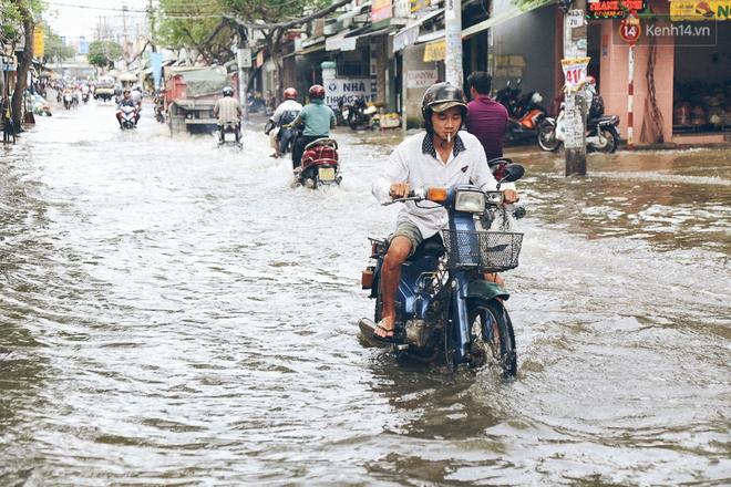 Cảnh tượng bi hài của người Sài Gòn sau những ngày mưa ngập: Sáng quăng lưới, tối thả cần câu bắt cá giữa đường - Ảnh 1.