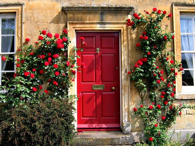 Muôn kiểu cửa nhà có hoa khiến ai ai đi qua cũng phải ngoái nhìn - Ảnh 1.