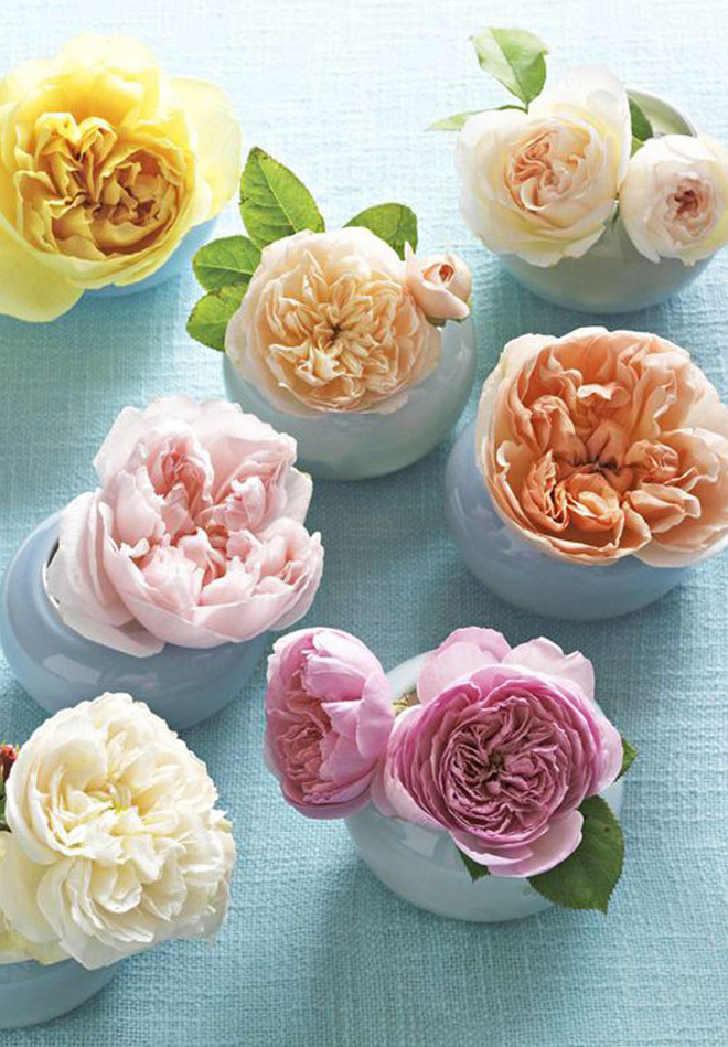 Những cách cắm hoa đơn giản giúp căn nhà từ buồn tẻ trở nên vô cùng sinh động - Ảnh 10.