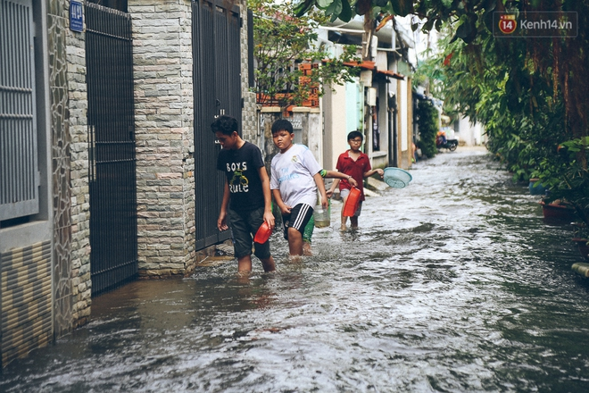 Cảnh tượng bi hài của người Sài Gòn sau những ngày mưa ngập: Sáng quăng lưới, tối thả cần câu bắt cá giữa đường - Ảnh 13.