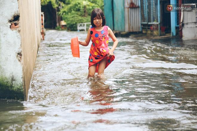 Cảnh tượng bi hài của người Sài Gòn sau những ngày mưa ngập: Sáng quăng lưới, tối thả cần câu bắt cá giữa đường - Ảnh 14.