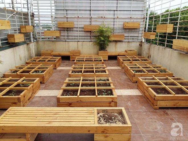 Trồng rau trong khung gỗ - giải pháp vừa có rau sạch để ăn lại vừa có khu vườn đẹp - Ảnh 15.