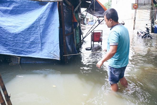 Cảnh tượng bi hài của người Sài Gòn sau những ngày mưa ngập: Sáng quăng lưới, tối thả cần câu bắt cá giữa đường - Ảnh 15.