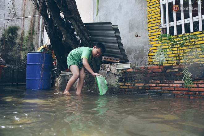 Cảnh tượng bi hài của người Sài Gòn sau những ngày mưa ngập: Sáng quăng lưới, tối thả cần câu bắt cá giữa đường - Ảnh 16.