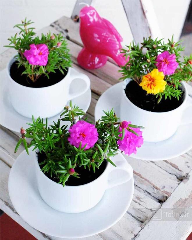 Những cách cắm hoa đơn giản giúp căn nhà từ buồn tẻ trở nên vô cùng sinh động - Ảnh 15.