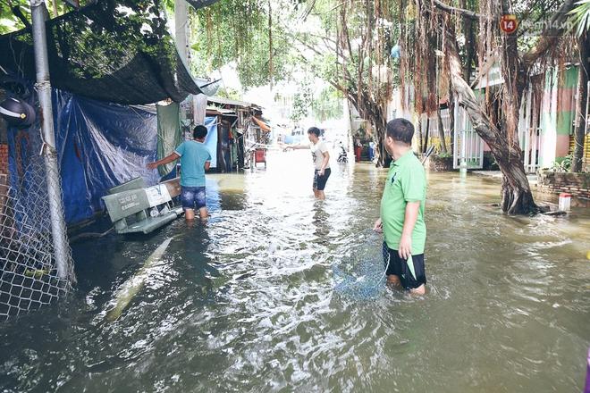 Cảnh tượng bi hài của người Sài Gòn sau những ngày mưa ngập: Sáng quăng lưới, tối thả cần câu bắt cá giữa đường - Ảnh 17.