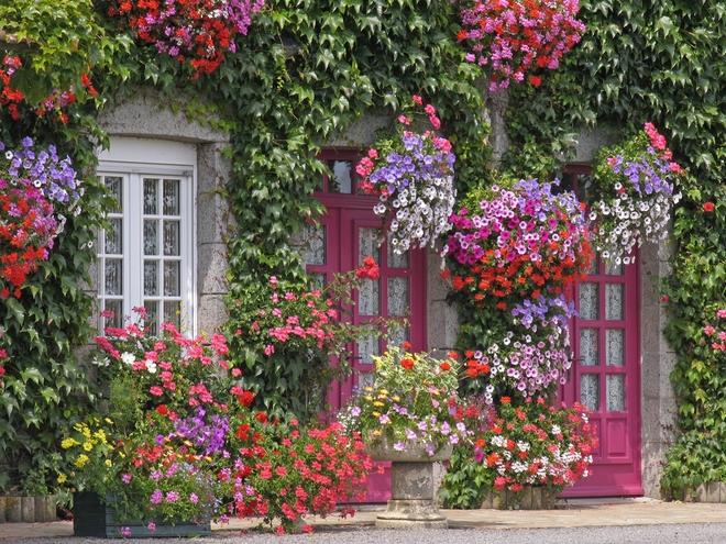 Muôn kiểu cửa nhà có hoa khiến ai ai đi qua cũng phải ngoái nhìn - Ảnh 3.