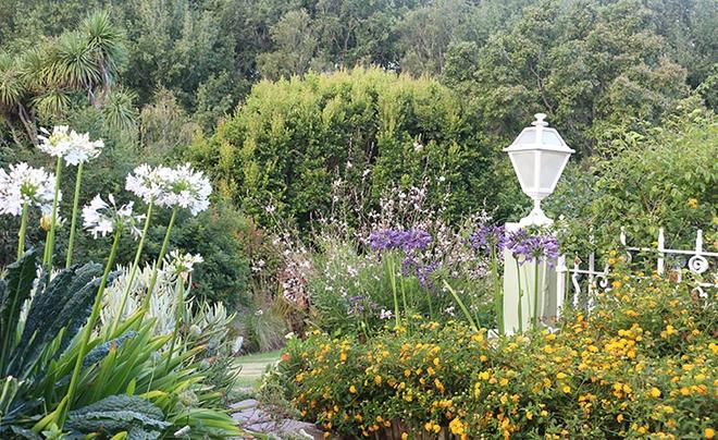 Khu vườn địa đàng của cụ bà 83 tuổi đã dành 33 năm để thỏa mãn tình yêu với cây và hoa - Ảnh 3.