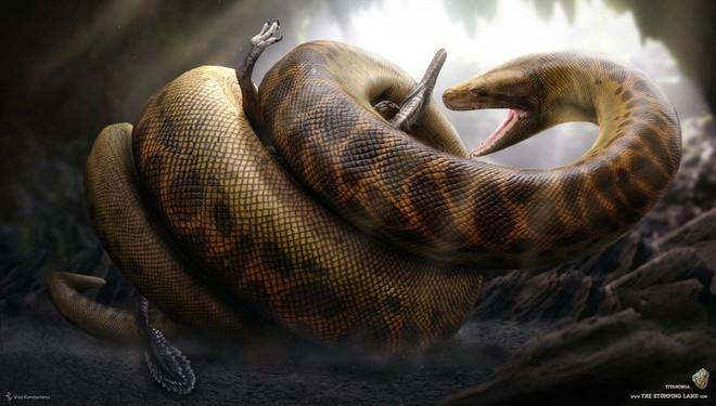 Vạch trần bức hình Rắn khổng lồ ăn thịt người ở Iran từng gây xôn xao mạng xã hội - Ảnh 3.