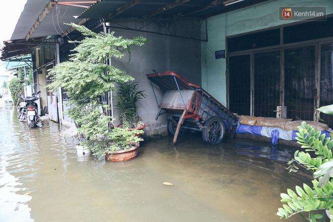 Cảnh tượng bi hài của người Sài Gòn sau những ngày mưa ngập: Sáng quăng lưới, tối thả cần câu bắt cá giữa đường - Ảnh 22.