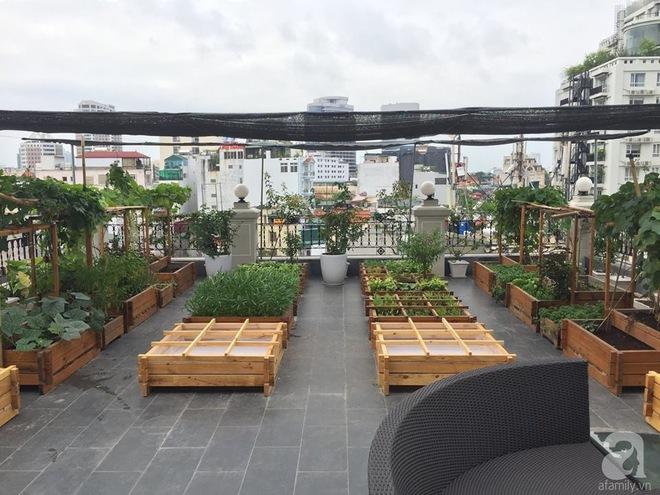 Trồng rau trong khung gỗ - giải pháp vừa có rau sạch để ăn lại vừa có khu vườn đẹp - Ảnh 24.