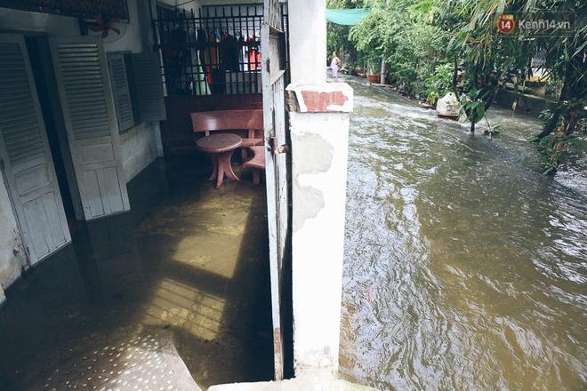 Cảnh tượng bi hài của người Sài Gòn sau những ngày mưa ngập: Sáng quăng lưới, tối thả cần câu bắt cá giữa đường - Ảnh 24.