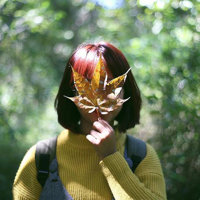 Mùa cưới đến rồi, bỏ túi ngay những địa chỉ chụp ảnh đẹp mê ly với lá vàng, lá đỏ này thôi - Ảnh 19.