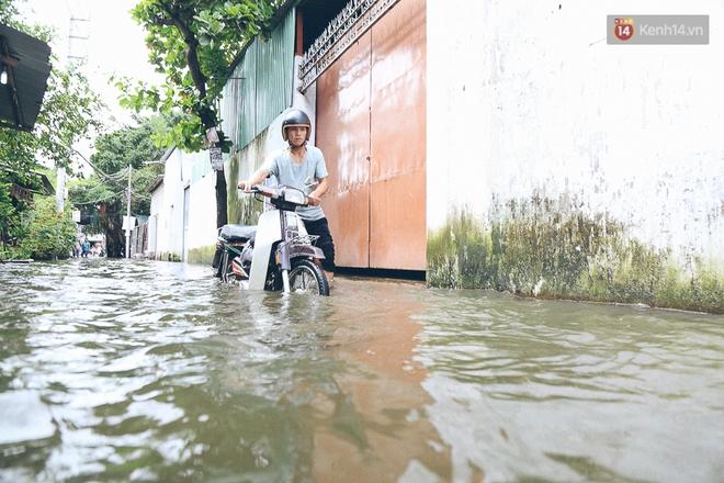 Cảnh tượng bi hài của người Sài Gòn sau những ngày mưa ngập: Sáng quăng lưới, tối thả cần câu bắt cá giữa đường - Ảnh 5.