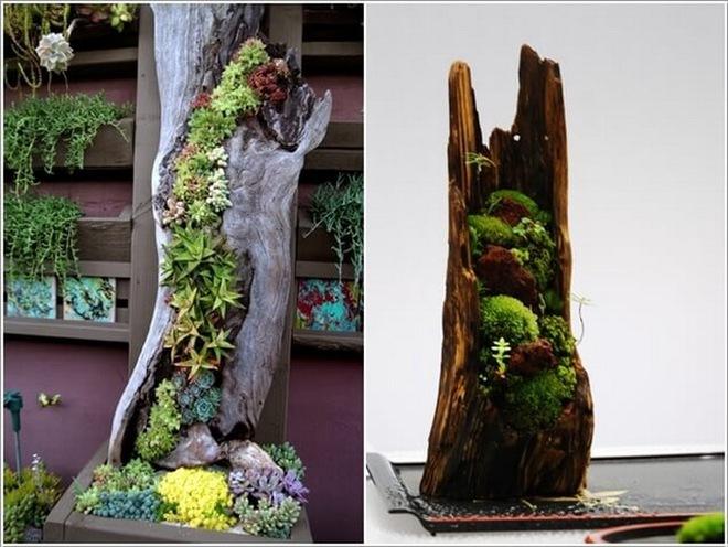 10 ý tưởng trồng cây thẳng đứng tiết kiệm không gian cho nhà chật - Ảnh 6.