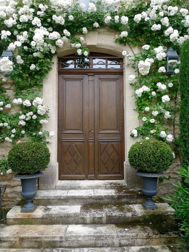 Muôn kiểu cửa nhà có hoa khiến ai ai đi qua cũng phải ngoái nhìn - Ảnh 8.