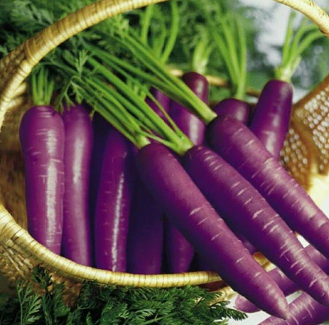 Những loại rau củ rực rỡ sắc màu khiến nhiều người không tin chúng có thật - Ảnh 12.