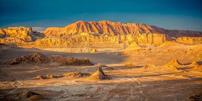 Hiện tượng kỳ lạ: Muôn hoa đua nở rực rỡ sắc màu ở sa mạc khô cằn nhất thế giới - Ảnh 1.