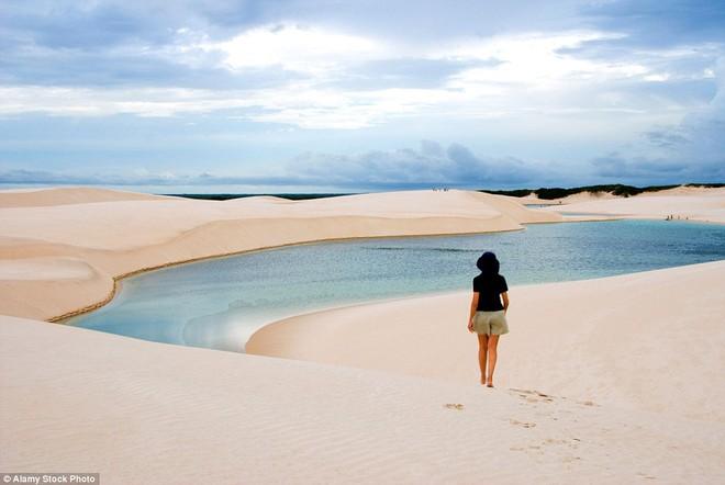 Kỳ diệu cảnh sa mạc biến thành hàng ngàn hồ nước xanh biếc đẹp như tiên cảnh - Ảnh 7.