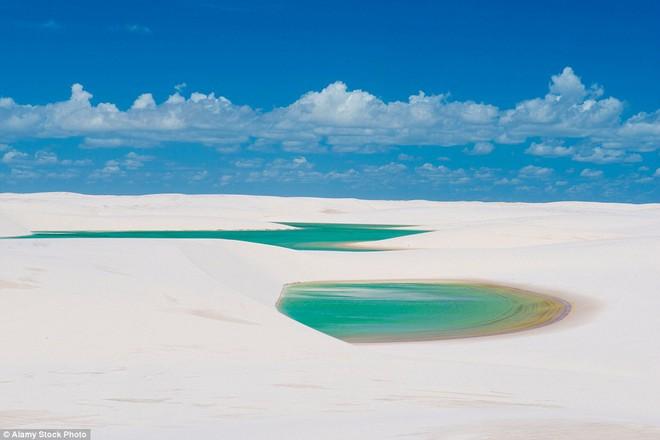 Kỳ diệu cảnh sa mạc biến thành hàng ngàn hồ nước xanh biếc đẹp như tiên cảnh - Ảnh 6.