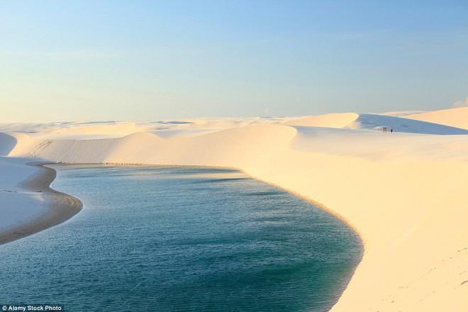 Kỳ diệu cảnh sa mạc biến thành hàng ngàn hồ nước xanh biếc đẹp như tiên cảnh - Ảnh 5.