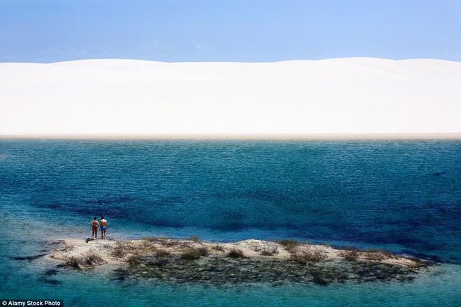 Kỳ diệu cảnh sa mạc biến thành hàng ngàn hồ nước xanh biếc đẹp như tiên cảnh - Ảnh 2.