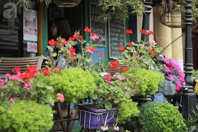 5 quán cafe rất xinh mà view tuyệt đẹp nhất định nên ghé khi đến Sa Pa - Ảnh 21.